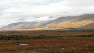 Svalbard, tundra landscape | by Billy Lindblom