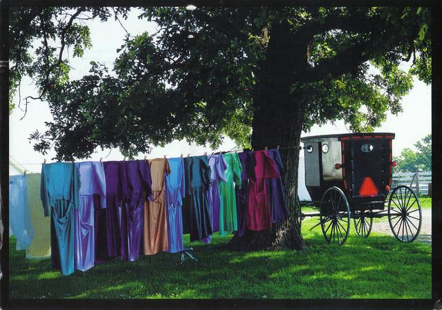 Amish Clothes Postcard