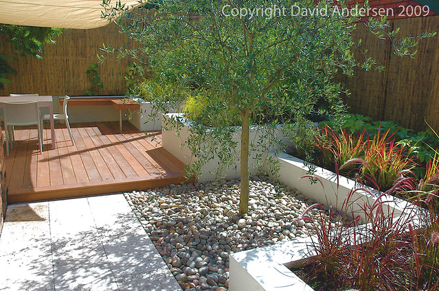Mediterranean Style Courtyard This Is A Contemporary