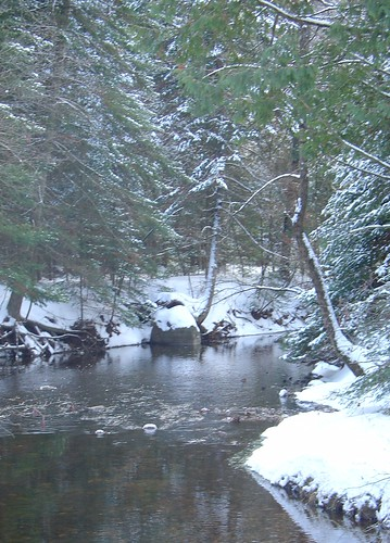 trees winter snow nature water forest river outdoors michigan scenary wilderness alger