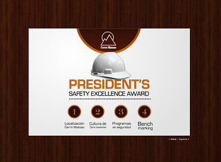 President's Safety Excellence Award - Developed for: View Master
