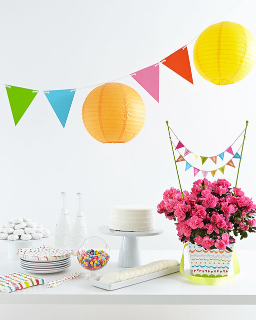 birthday party azalea potted plant cake on platter candy banner Chinese lanterns