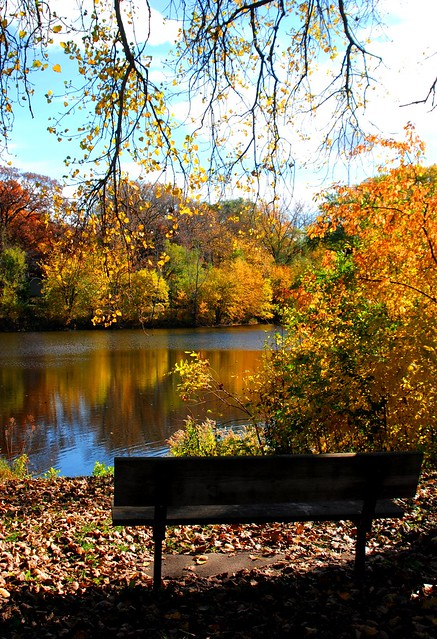 a place to sit at memory lane pond