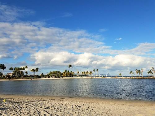 biscaynebay coralgables miami florida mathesonhammockpark dadecounty park beach ocean bay coconuttree samsungsmg935a samsunggalaxys7edge sunshinestate sand atollpool