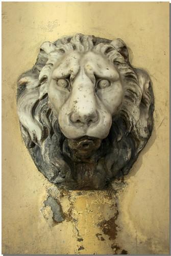 Leone fontana Fiesole