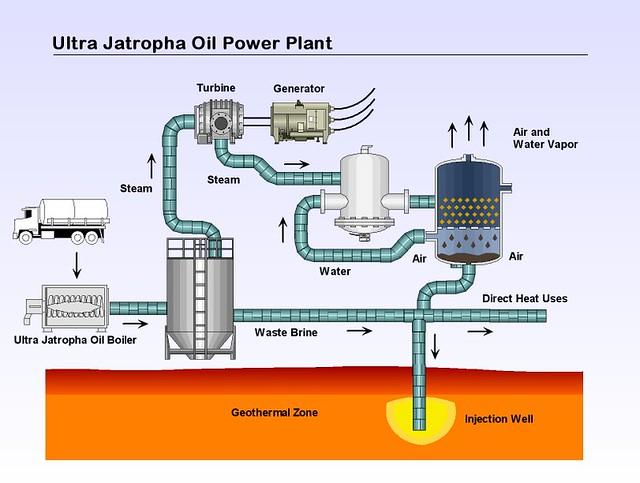 ultra jatropha oil power plant | by lawren48