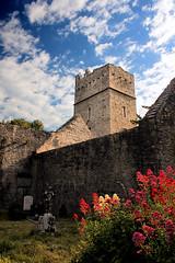 IMG_3303 Muckross Abbey