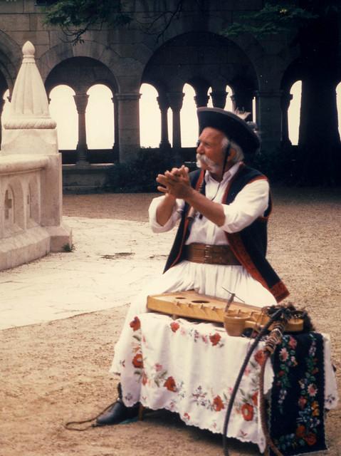 Hungarian troubador