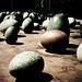 Dinosaur eggs by McAlister