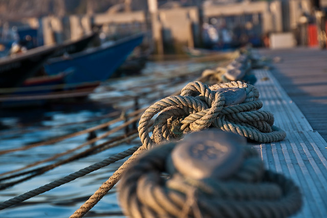 236 ~ playing with the boat mooring ropes