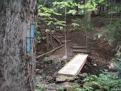 Bruce Trail Georgetown 071