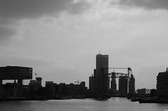 Flickr Rotterdam Meetup