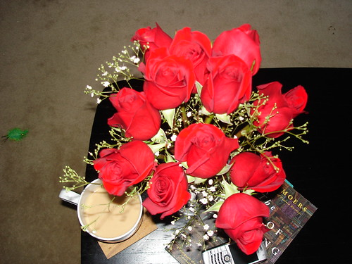 Valentine Morning | by nellebabe