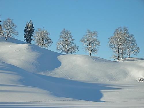 Switzerland / January 1,2009 The Jura Mountains