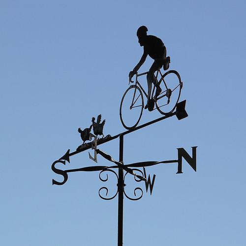 Cyclist Vane