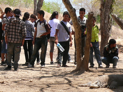School children by a komodo dragon | by East Asia & Pacific on the rise - Blog
