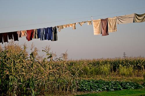 Amish Clothes Line | by Bob Jagendorf