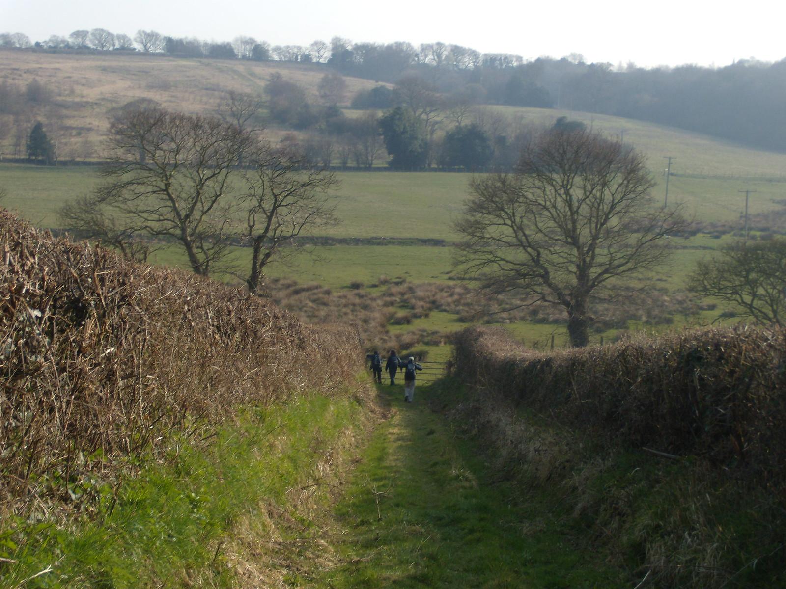 Down a bridleway Rye Circular