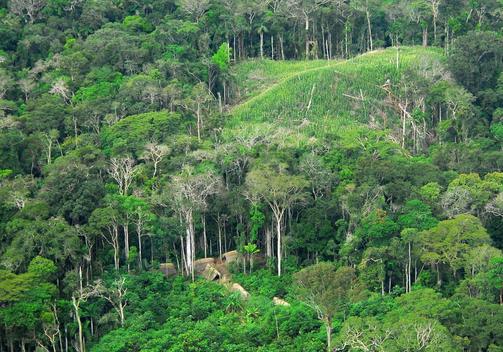photo of uncontacted amazon village