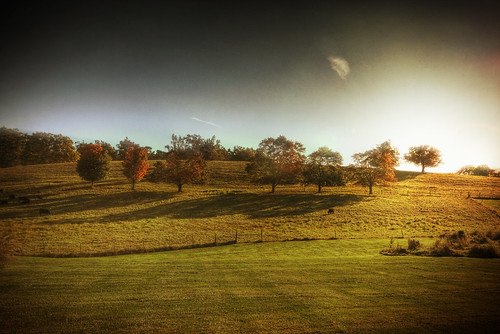 morning sunlight fall texture field rural photoshop sunrise canon landscape october cows farm massachusetts country newengland hdr highdynamicrange sigma1020mm grotonma 40d patrickcampagnone