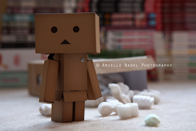 Welcoming Danbo