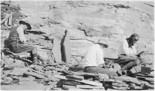 Charles Doolittle Walcott (1850-1927), Sidney Stevens Walcott (1892-1977), and Helen Breese Walcott (1894-1965) | by Smithsonian Institution
