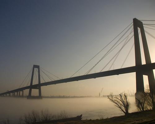 bridge fog sunrise