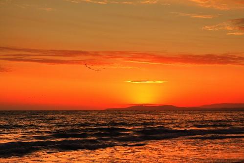 california sunset beach birds santabarbara clouds waves flight kennelly