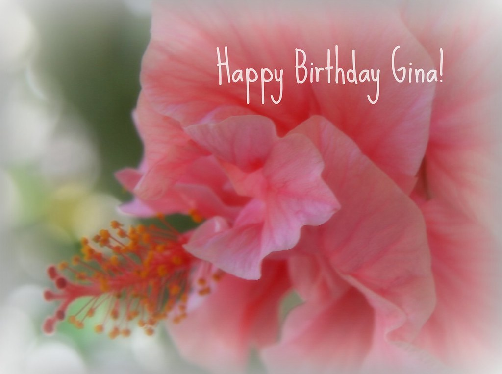 Happy Birthday Gina Totisprz Flickr
