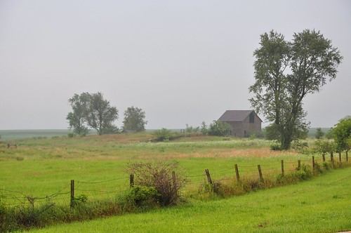 morning trees summer sky mist green grass barn rural fence illinois wire solitude quiet farm pasture barbedwire americana lonely posts solitary