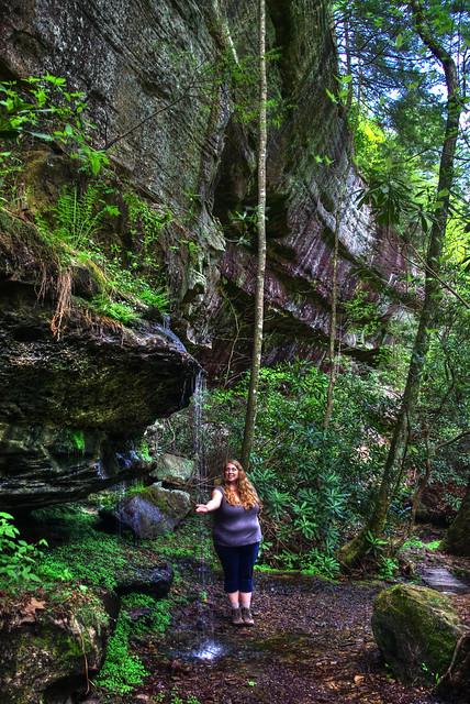 Alexis Lienhart, Waterfall, Colditz Cove SNA, Fentress Co, TN