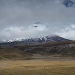 Sa, 13.06.15 - 12:37 - Parque Nacional Cotopaxi