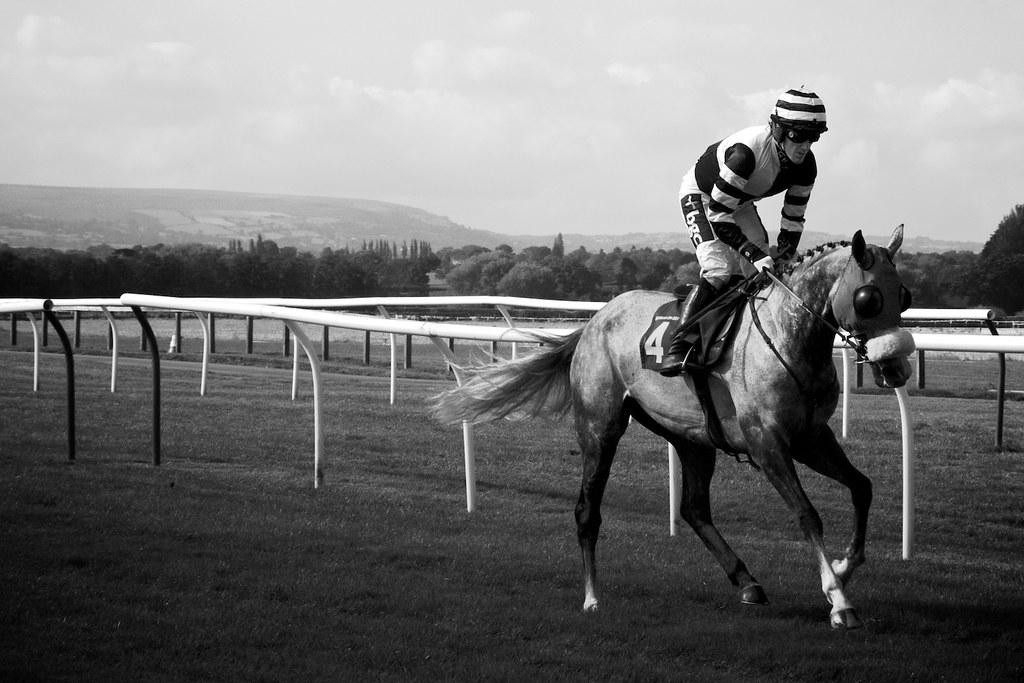 Ap Mccoy Black White Horse Racing Photo Black And White Flickr