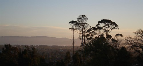 sunset newzealand canon landscape dslr gisborne gumtrees rebelxs 1855is 1000d raizer