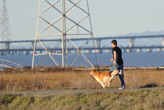 Running with his dog at Palo Alto Baylands