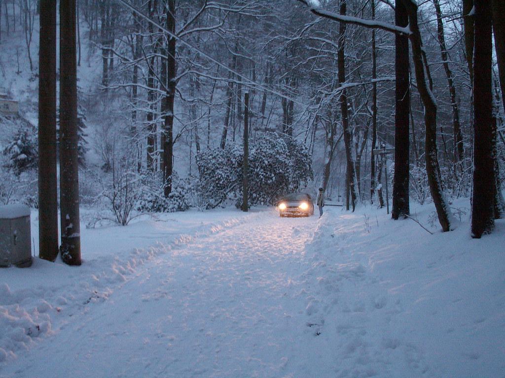 Weisser Schnee im Wachwitzgrund beflügelt das Gehirn. Tannen erscheinen beschneit, die Sonne und die dürren Oktoberzweige sind aus dem Blick entfernt, so schön der Schnee 128
