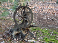 driftwood wheel and moss by smilin7h
