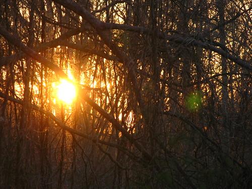 sunrise g7 project365 carnesvillega aphotoadayin200948