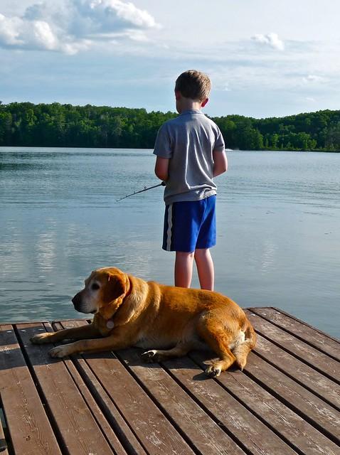 a boy, a dog, and a lake