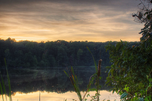 sunset mill pond yates