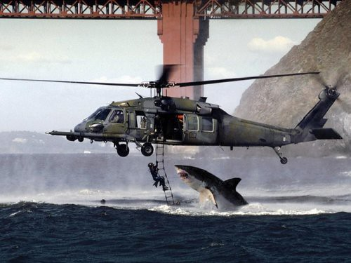 Shark and helicopter