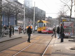 my tram today