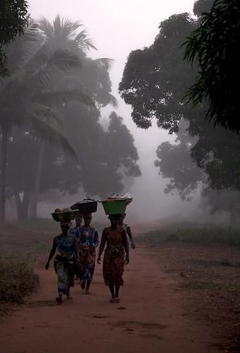 africa rural sunrise dawn westafrica afrika vrouw arbeid westafrika zonsopgang guineabissau tombali cadique guineebissau ruraal vrouwenarbeid catanhez womenactivities