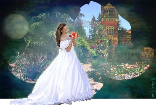 Entrance to the magic garden