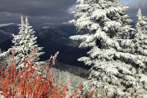 winter white snow nature landscape scenic idaho rockymountains bitterrootmountains shoshonecounty