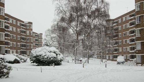Ruskin Park House in the Snow