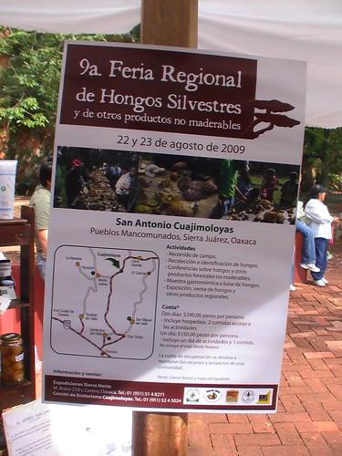 9a Feria Regional de Hongos Silvestres