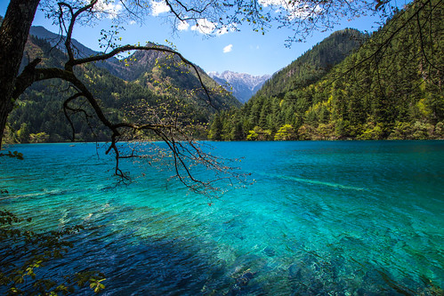 Mirror lake, Jiuzhaigou Valley | by jmhullot