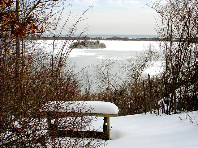 Island Pond in Winter
