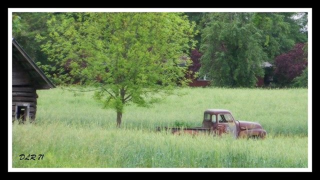 Chevrolet & nature